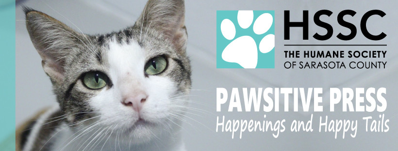 PAWSITIVE PRESS | Happenings & Happy Tails | JULY 2021